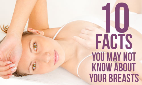 10 Facts You May Not Know About Your Breasts in Maryland